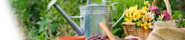 Recambios para aparatos de jardin