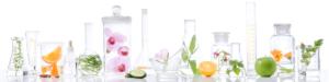 Productos naturales para limpiar tus artefactos